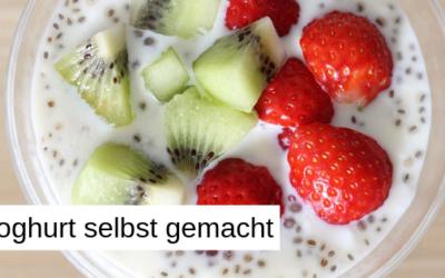 Joghurt easy selber gemacht