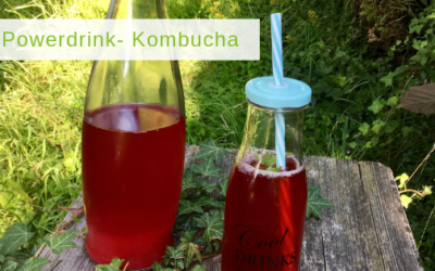 Kombucha – super leckerer Wellnessdrink